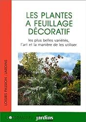 Les plantes à feuillage décoratif