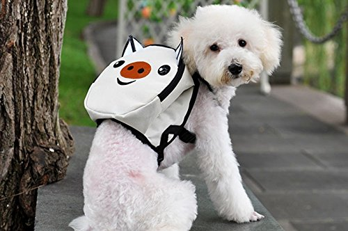 Mochila cerdito para tu mascota llevara su agua, sus chuches sus toallitas y bolsas... y tambien tus cosas novedad en tiendas de mascotas peluqueria canina veterinario de OPEN BUY