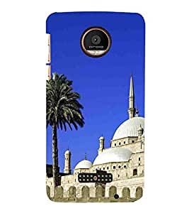 For Coolpad Max Masque, White, Tree, Great pattern, Printed Designer Back Case Cover By CHAPLOOS