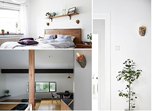 Montagna elm applique da parete in legno in legno massello da