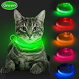BSEEN LED-Hundehalsband, USB-wiederaufladbar, leuchtendes Hundehalsband für kleine Hunde, Sicherheits-Katzenhalsband mit verstellbarem Nylon-Gurtband, hohe Sichtbarkeit für Hunde und Katzen, grün