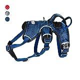TUFF HOUND Atmungsaktiv, sicher, Reflektierende, Verstellbare Multi-Use Harness Dog Chest Strap für Kleine Mittlere und große Hunde (L, Blue)