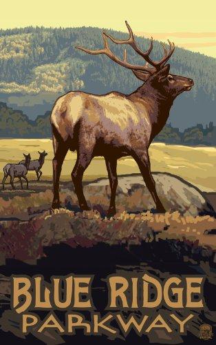 Northwest Art Mall Blue Ridge Parkway Elk North Carolina Art Wand von Paul eine lanquist, 11von 43cm