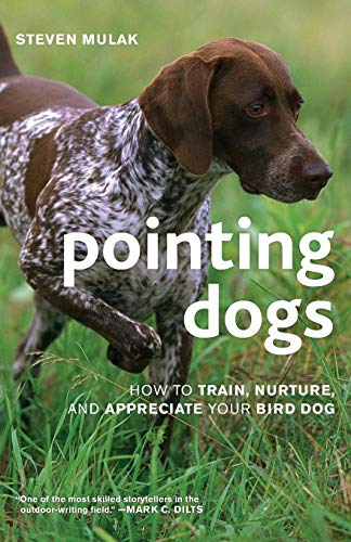 Pointing Dogs: How to Train, Nurture, and Appreciate Your Bird Dog -