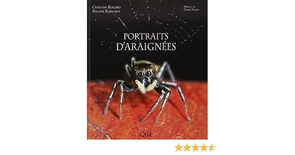 Amazon Fr Portraits D Araignees Blanchot Philippe Rollard Christine Livres
