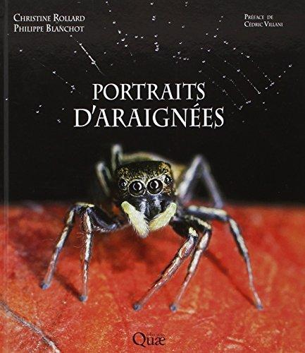 portraits-daraignees