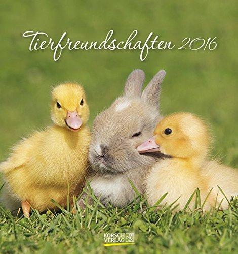 Tierfreundschaften 2016: aufstellbarer Postkartenkalender