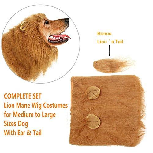 stüm für Groß Mittel Hunde Pet,Verstellbares Haustier Kostüm Mit Ohr und Schwanz für Festival Party Weihnachten Halloween Cosplay (Hund Kostüm Löwe Mähne)