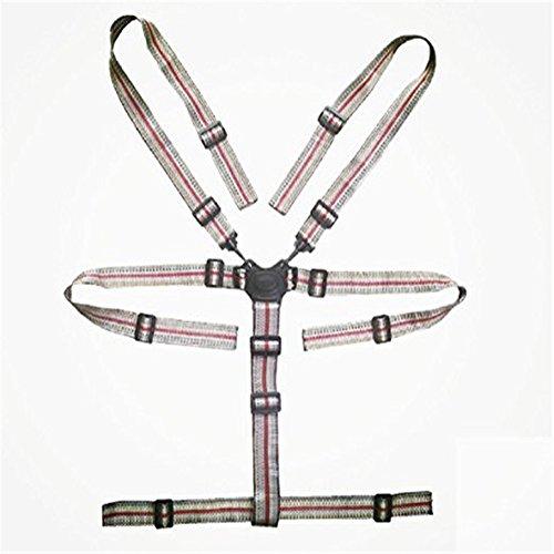 Alto seggiolone cinghie, universale per cintura/cinghie/imbracatura/per computer in legno seggiolone passeggino (bambino cintura di sicurezza a 5punti) (grigio)