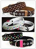 Lushpetz Designer Inspiriertes Hundehalsband in braun, schwarz oder weiß, passende Leinen separat erhältlich (Mittel, Weiß)