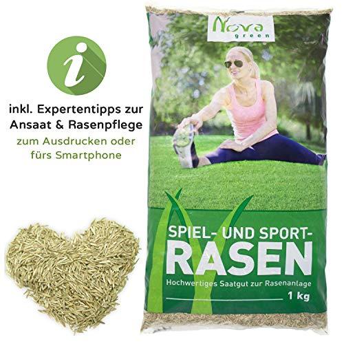 Premium Rasensamen für Herbst Ansaat 1kg = 30-40m² | schnellkeimend, dürreresistent, robust, tiefgrün | Ideal sowohl für Neuansaat und Nachsaat | Rasensaat Grassamen