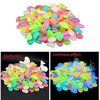 hunpta 100 Glow in Dark Pebbles Stone Home Garden Walkway Aquarium Fish Tank 5106uy2XloL
