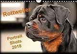 Rottweiler Portait Shots  2018 (Wall Calendar 2018 DIN A4 Landscape): Rottweiler Portrait Head Shots (Monthly calendar, 14 pages ) (Calvendo Animals)
