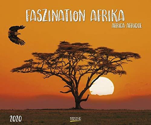 Faszination Afrika 2020: Großer Wandkalender. Foto-Kunstkalender afrikanischer Tiere in der Natur. Querformat 55 x 45,5 cm. Edles Foliendeckblatt und Glanzlackierung.