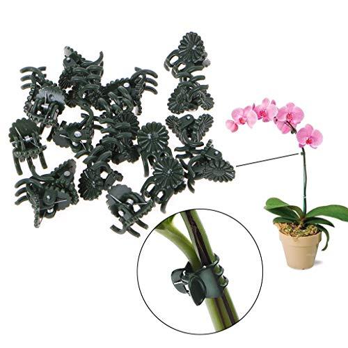 ESden Pflanzen-Clips für Orchideen, Stiel, Ranken, für Gemüse, Blumen, Obst, Zweige, Kunststoff, 20 Stück -