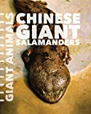Chinese Giant Salamanders (Giant Animals)
