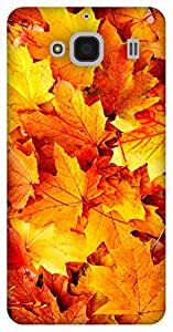 The Racoon Grip Autumn Beauty hard plastic printed back case / cover for Xiaomi Redmi 2 Prime