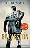 Galveston: Roman von Nic Pizzolatto