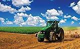 Welt-der-Träume Fototapete Tapete Wandbild Grüner Traktor auf dem Feld | P8 (368cm. x 254cm.) | Photo Wallpaper Mural 1909P8-MS | Natur Ländlich Traktor Transport Landwirtschaft