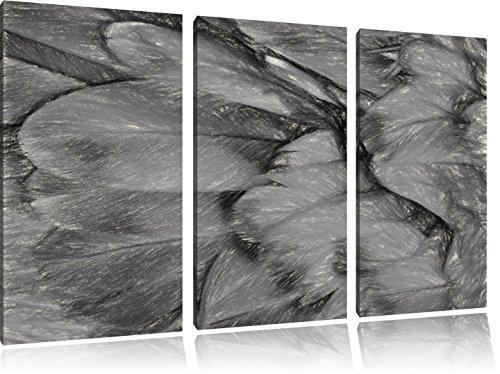 Preisvergleich Produktbild Bunte Papageienfedern Kohle Zeichnung Effekt 3-Teiler Leinwandbild 120x80 Bild auf Leinwand, XXL riesige Bilder fertig gerahmt mit Keilrahmen, Kunstdruck auf Wandbild mit Rahmen, gänstiger als Gemälde oder Ölbild, kein Poster oder Plakat