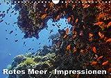 Rotes Meer - Impressionen (Wandkalender 2018 DIN A4 quer): Unterwasserfotos aus dem Roten Meer (Monatskalender, 14 Seiten ) (CALVENDO Natur) [Kalender] [Apr 13, 2017] Eberschulz, Lars