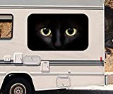 3D Autoaufkleber Katze grüne Augen in der Dunkelheit Wohnmobil Auto KFZ Fenster Motorhaube Sticker Aufkleber 21A963, Größe 3D sticker:ca. 45cmx27cm