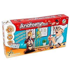 Science4you-Anatomia 2 en 1, Juguete Educativo y cientifico, Multicolor (80002229)