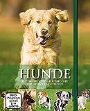 Hunde - Geschenkbox mit Buch & DVD: Rassen - Pflege - Geschichte bei Amazon kaufen