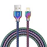 Fantany Lightning Ladekabel,[MFi-Zertifiziert] Metal aufgerollt Lightning Ladekabel USB Lightning Kabel Kompatibel für iPhone X,XS Max,8 Plus,7 Plus,6s Plus,iPad Mini, iPad Pro,1m Länge,1 Stück