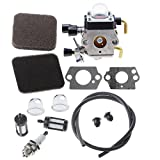 HIPA Carburetor with Fuel Repower Kit Ai...