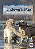 Hundeverhalten - erkennen und verstehen