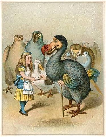 Impression sur bois 30 x 40 cm: The Dodo solemnly presented the thimble from Alice's Adventures in Wonderland de John Tenniel / Bridgeman Images