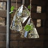 Rehytsg 3-in-1 Glasvase zum Aufhängen, geometrisches Glas, Hydrokultur-Vase