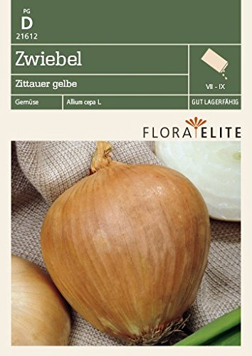 Flora Elite 21612 Zwiebel Zittauer gelbe [MHD 06/2018] (Zwiebelsamen)