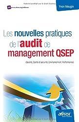Les nouvelles pratiques de l'audit de management QSEP : (Qualité, Santé et sécurité, Environnement, Performance)
