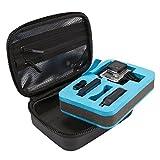 Thule TLGC101 - Funda Semi rígida para cámara Go Pro y Accesorios, Color Negro