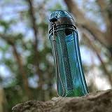 Invigorated Water – pH REVIVE – Trinkflasche mit Wasserfilter für basisches Wasser – mit Transporthülle – Aquablau – 750 ml - 2