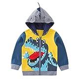 CHIC-CHIC Sweat-shirt à Capuche Pull Garçon Bébé Enfant Manteau Sport Hoodie Déguisement Mignon Zip Dinosaure 5-6ans
