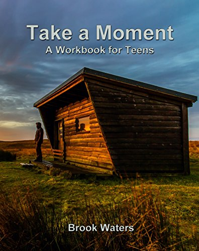Take A Moment - Depression and Anxiety Workbook For Teens: A Practical Guide to Developing a Safety Plan - Self Help Book for Teens, Parents, Teachers. Log Cabin Theme (English Edition)