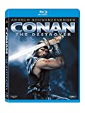 Conan: The Destroyer