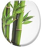 WC Sitz, hochwertige Oberfläche, einfache Montage, stabile Scharniere, Bambus Grün