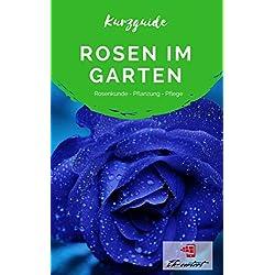 Kurzguide Rosen im Garten: Rosenkunde - Pflanzung - Pflege
