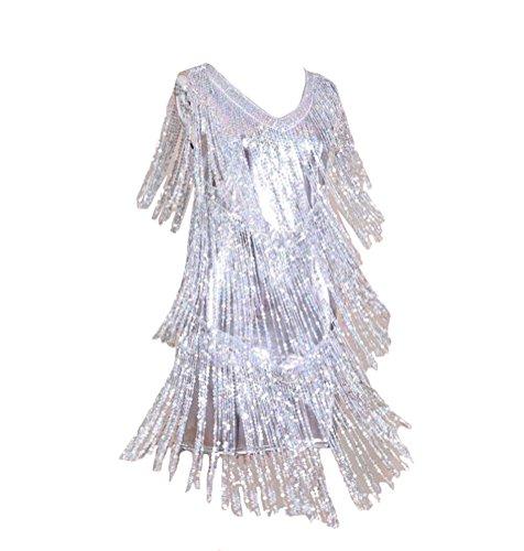 Brinny Klassiker 20er Double Side Flapper Fringe Tassel Tiered Swing Minikleid Partei Passt für EU (Fringe Kleid Silber)