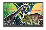 BenQ 9H.F3JTC.DE1 RP704K 177,8 cm (70 Zoll) großformatiges Touch-Display Fernseher (4K, UHD, 3840 x 2160, LED Panel, Android 5.1 OS System, 20-Punkt-Multitouch-Interaktivität)