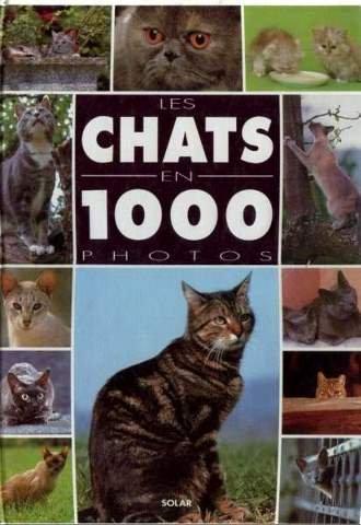 Les Chats en 1000 photos / Philippe Coppé |