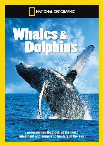 national-geographic-whales-dolphins-dvd-2-discs