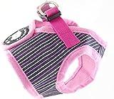 Brustgeschirr mit Leine und Autosicherheitsgurt/Brustumfang 45-46 cm, Länge 18 cm, Autogeschirr/Sicherheitsgurt gratis