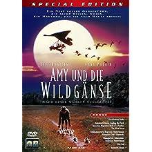 Coverbild: Amy und die Wildgänse