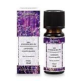 pajoma Lavendel Öl, ätherisch, 100% naturrein, 10 ml