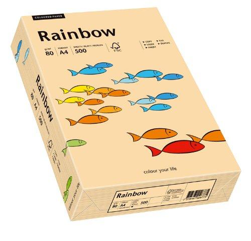 Papyrus 88042497 Drucker-/Kopierpapier farbig: Rainbow 80 g/m², A4 500 Blatt lachs